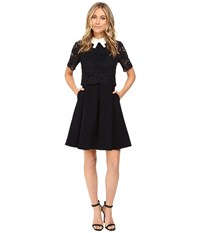Ted Baker Dixxy Lace Bodice Double Layer Dress Navy Women's Dress