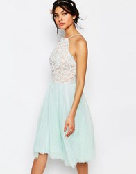 Jarlo Edie Tulle Lace Halter Dress Mint