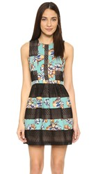 Bcbgmaxazria Combo Dress Black Combo