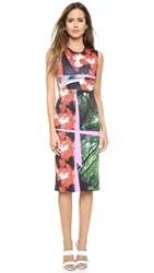 Clover Canyon Secret Garden Cutout Dress Multi