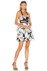 Bcbgeneration Waist Strap Dress Black And White