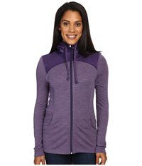 Smartwool Nts Mid 250 Hoodie Sport Desert Purple Heather Women's Sweatshirt