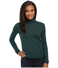 Pendleton Petite Classic Turtleneck Sweater Evergreen Women's Long Sleeve Pullover