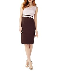 Phase Eight Florence Scalloped Dress Blush Chocolate