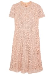 Red Valentino Blush Guipure Lace Dress Light Pink