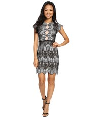 Brigitte Bailey Mica Short Sleeve Lace Dress Black Ivory Women's Dress