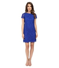 Adrianna Papell Katie Lace Shift Dress Yves Blue Women's Dress