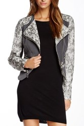 Fillmore The 296 Faux Leather Snake Print Mixed Media Jacket Gray