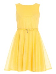 Chase 7 Organza Fit And Flare Dress Yellow