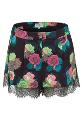 Wolf And Whistle Teal Rose Trim Shots Multi Coloured