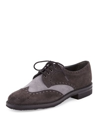 Gravati Two Tone Suede Wing Tip Oxford Navy