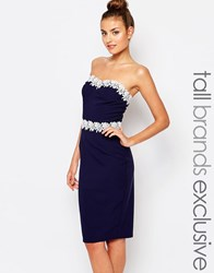 Paper Dolls Tall Bandeau Pencil Dress With Lace Trim Navy