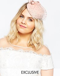 Johnny Loves Rosie Blush Occasion Hat With Mesh Veil Pink