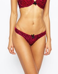 Gossard Everyday Animal Instinct Thong Black And Red
