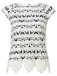 Adrianna Papell Stripe Lace Top White