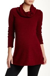 Pinkblush Maternity Sequin Elbow Cowl Neck Maternity Sweater Red