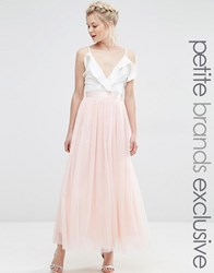 True Decadence Petite All Over Mesh Full Skirt Peach