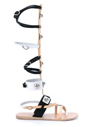 Ancient Greek Sandals X Peter Pilotto High Leather Gladiator Sandals Black