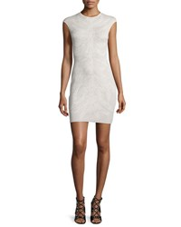 Alexander Mcqueen Cap Sleeve Spine Lace Mini Dress Ivory