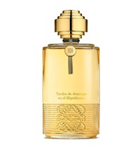 Loewe Tardes De Domingo En El Hipodromo Edp 100Ml Male