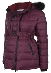 Bellybutton Meja Down Jacket Winetasting Bordeaux