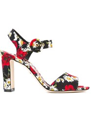 Dolce And Gabbana Daisy And Poppy Print Sandals Black