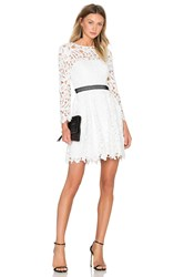 Cynthia Rowley Wild Flower Fit And Flare Dress White