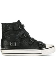 Ash 'Virgin' Buckle Sneakers Black