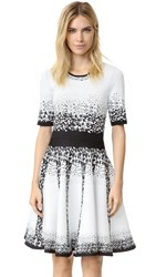 Yigal Azrouel Ombre Dress Jet Multi