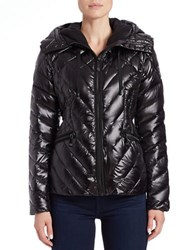 Vince Camuto Quilted Puffer Jacket Black