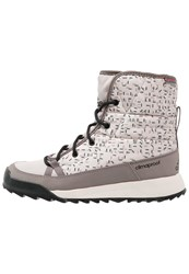 Adidas Performance Cw Choleah Cp Winter Boots Tech Earth Vapour Grey Clear Brown Beige
