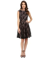 Rsvp Arria Cap Sleeve Lace Dress Black Nude Women's Dress Multi
