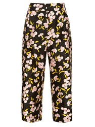 Marni Sistowbell Floral Print Cotton Blend Trousers Black Print