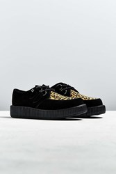 T.U.K. Low Sole Leopard Print Creeper Shoe Black