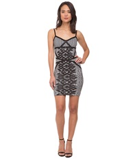 Whitney Eve Miracle Leaf Dress Black White Women's Dress