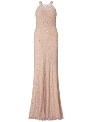 Adrianna Papell Caviar Sheer Back Dress Taupe Pink