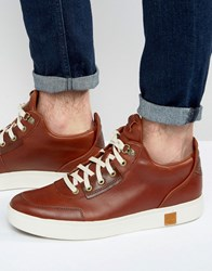 Timberland Amherst Trainers Tan Brown