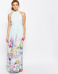 Ted Baker Hanging Gardens Border Maxi Mint Green