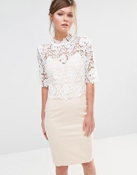 Paper Dolls High Neck Lace Dress With Pencil Skirt Nude White