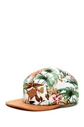 Globe Beaconsfield 5 Panel Cap Multi
