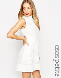 Asos Petite Skater Dress In Mesh With High Neck And Cut Out Back White
