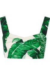 Dolce And Gabbana Printed Cotton And Silk Blend Brocade Bra Top Green