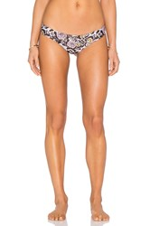 Beach Riot X Stone Cold Fox Zoe Bottom Black
