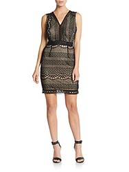 Romeo And Juliet Couture Lace Sheath Dress Black