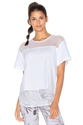 Adidas By Stella Mccartney Essentials Mesh Tee White
