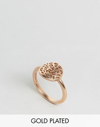 Pieces And Julie Sandlau Rose Gold Plated Jiu Ring Rose Gold
