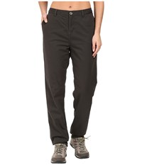 Woolrich Alderglen Flannel Lined Chino Pants Matte Gray Women's Casual Pants