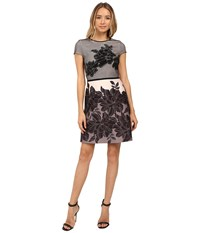 Christin Michaels Zahra Mesh Overlay Fit And Flare Dress Taupe Black Women's Dress