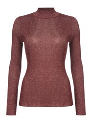 Therapy Anya Lurex Rollneck Top Burgundy
