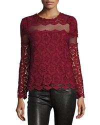 Romeo And Juliet Couture Long Sleeve Mesh Inset Lace Blouse Burgundy